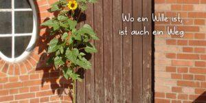 Blume und das Leben im Einklang