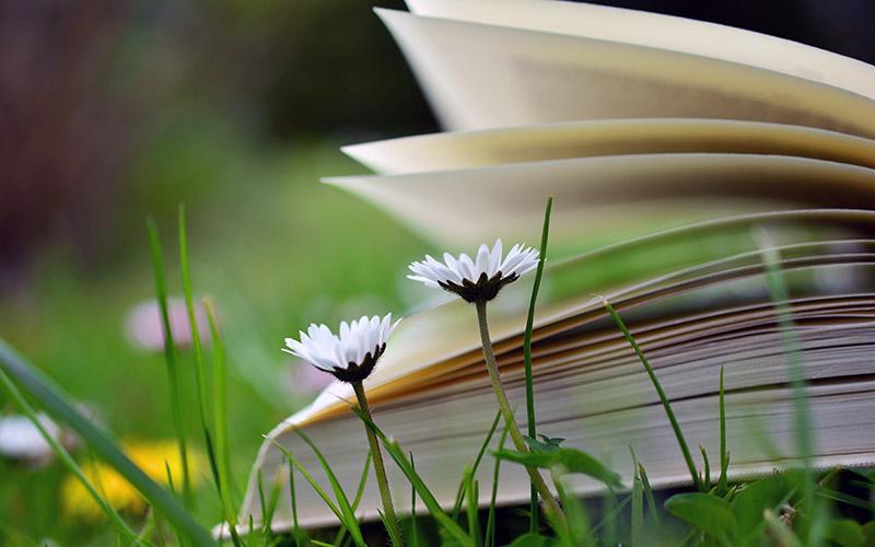 Bücher zur Achtsamkeit